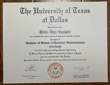 How Many People Owned the UT-Dallas Degree online?