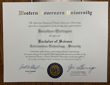 Western Governors University Degree Sample