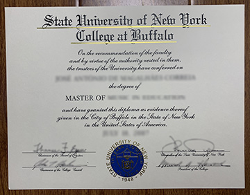 State University of New York college at Buffalo Degree Sample