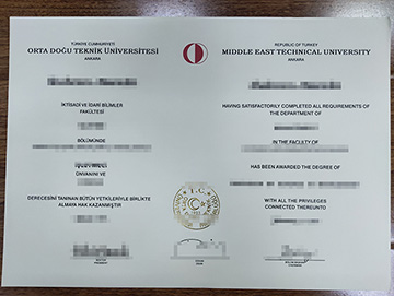 Which Jobs Can I Apply For With A METU Diploma?