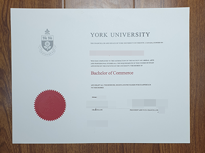 Get York University Bachelor Degree