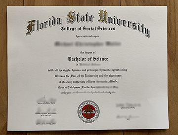 What Made You Buy A Florida State University Diploma?