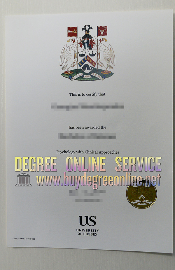 university of Sussex degree
