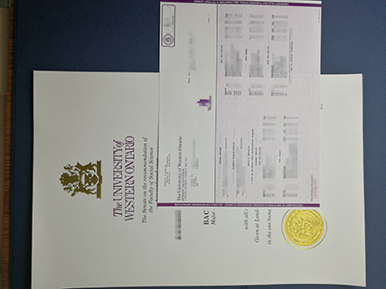 The samples of the University of Western Ontario degree and transcript