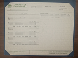 How do I get the fake transcript from USF(University of South Florida)?