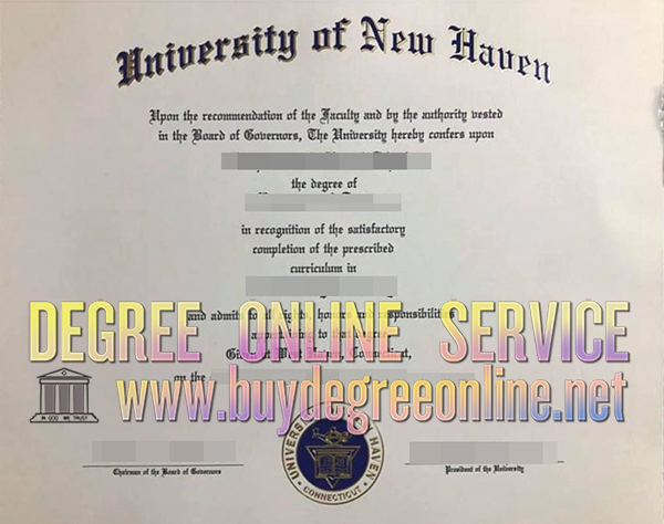 University of New Haven degree