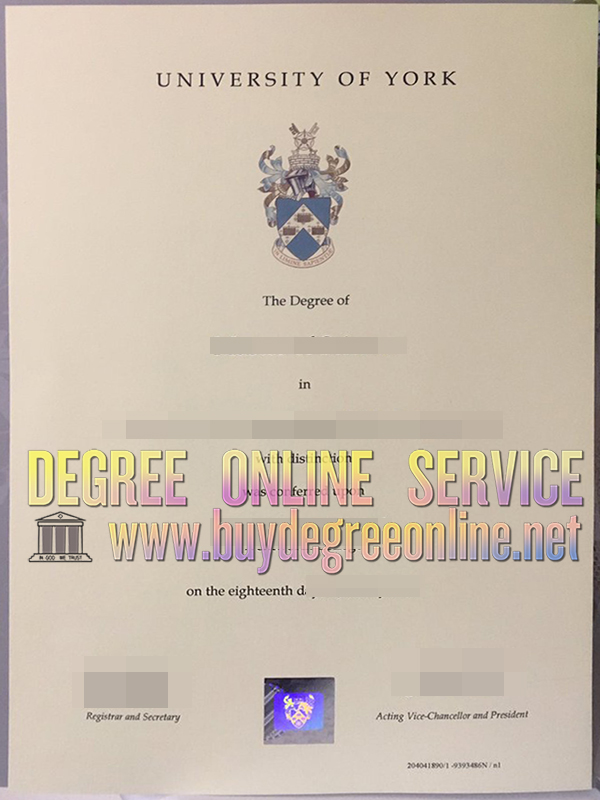 University of York degree