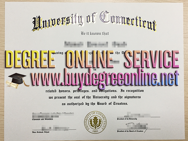 University of Connecticut diploma