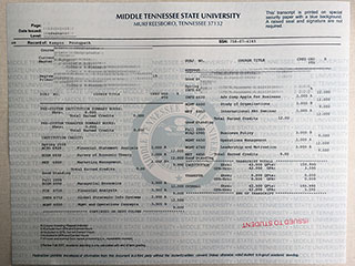 Order a fake MTSU transcript, buy a fake Middle Tennessee State University diploma