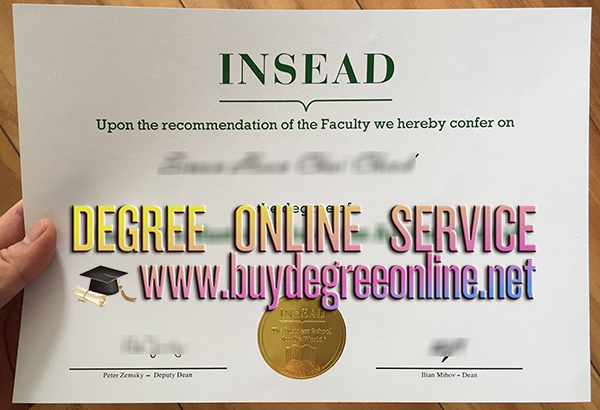 Insead MBA degree