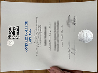 Fake Niagara College Canada diploma, buy Niagara College degree online