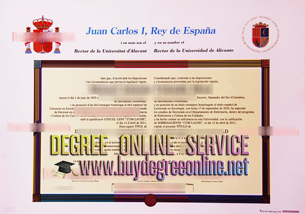 Universidad de Alicante diploma