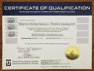 Can I get a fake certificate of qualification from outside Canada?