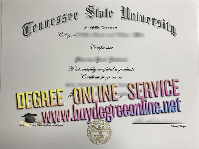 Tennessee State University degree